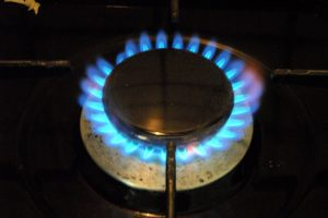 Gas stove and burner