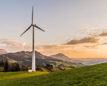 Bulb Acquires Over 100,000 Green Energy Customers