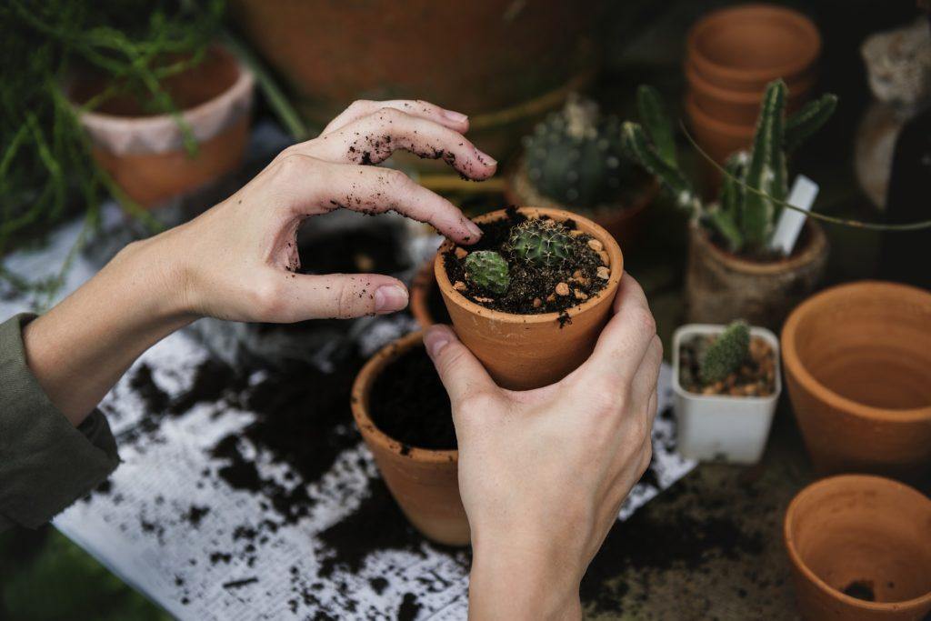 Enjoying planting in a garden