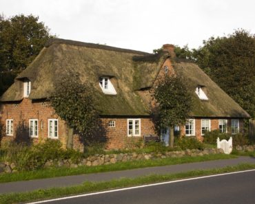 A house with a moss covered thatched roof