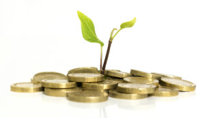 Money with green shoots - an investment concept