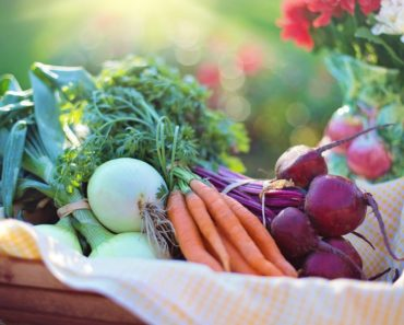 6 Great Tips for Living a Healthier and More Organic Lifestyle