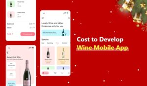 Graphic showing  the costs of developing a wine app