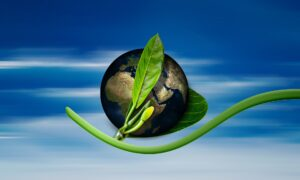 Protecting the planet - an eco-friendly concept
