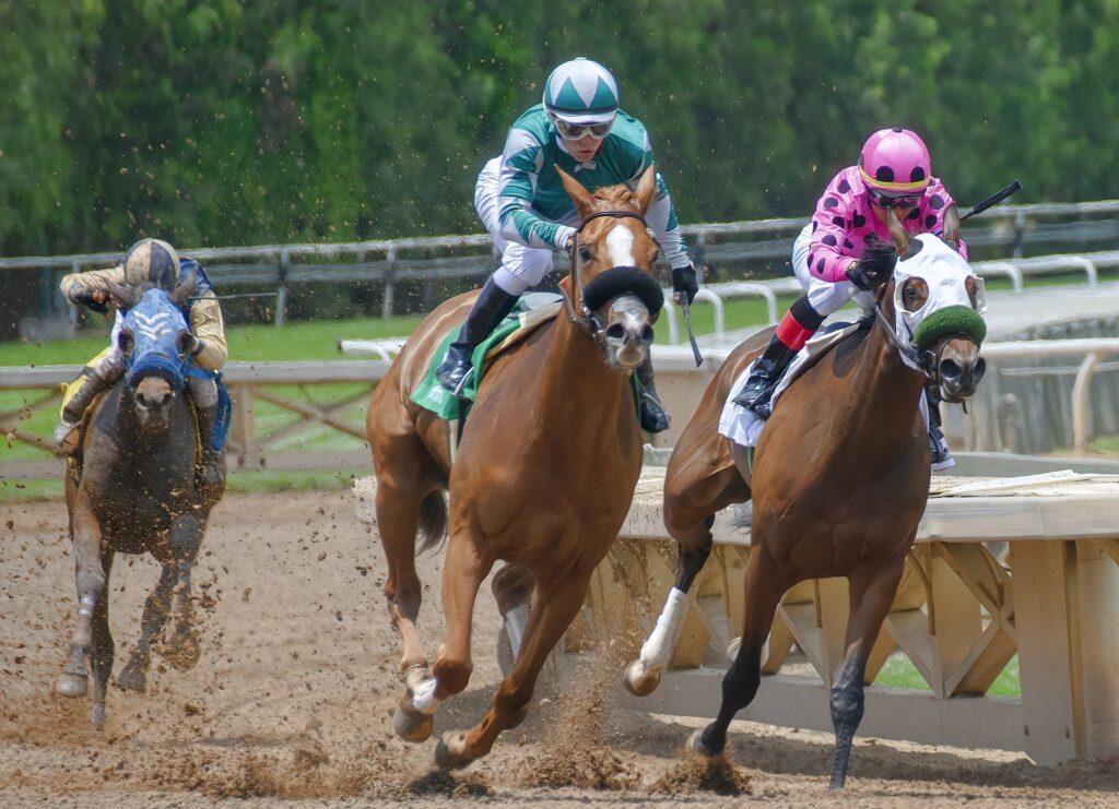 Three horses racing