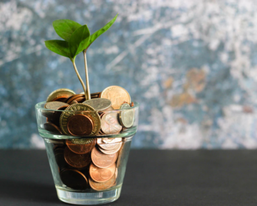 Nurturing the growth of money