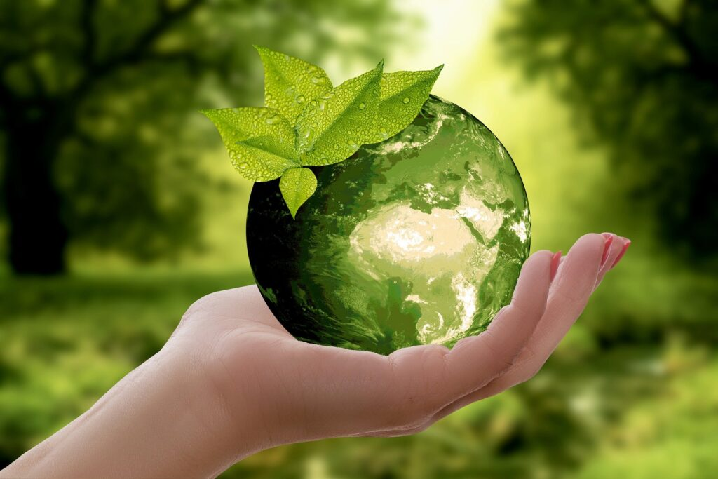 The earth within our hands - a sustainability concept