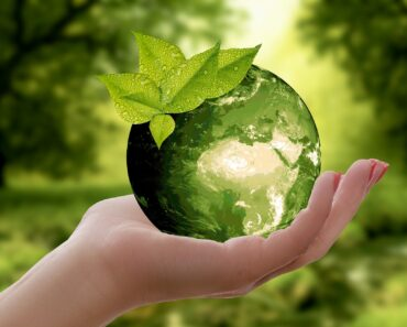 5 Ways to Save Money by Being More Sustainable