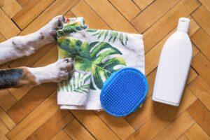 Dog shampoo and a grooming brush