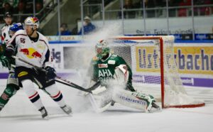 Playing professional ice hockey