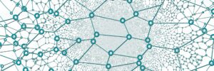 Nodes on a network