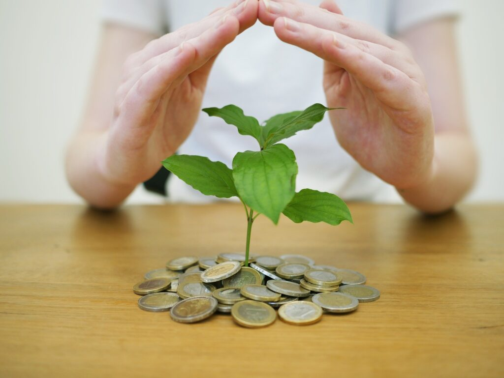 Money and a growing tree - an investing concept