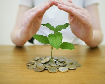 Momentum Investing: a Beginners Introduction