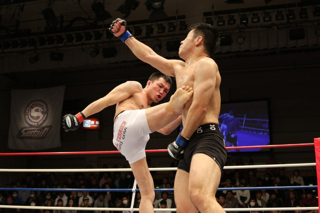Mixed martial arts in action