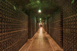 A large wine cellar