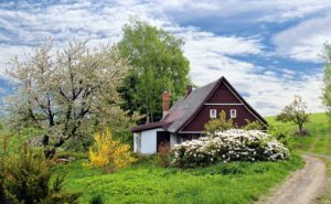 A picturesque holiday cottage