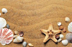 Holiday travel insurance