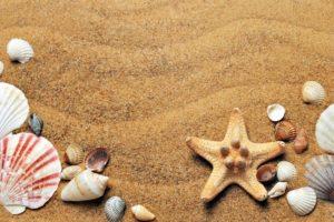 Holiday travel insurance myths