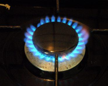 Gas stove and burner