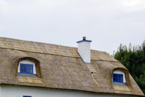 A thatched roof in close up