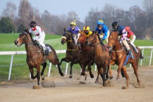 Horses and jockies racing