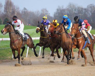 Horses and jockies racing