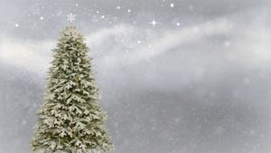 A Christmas tree and snow