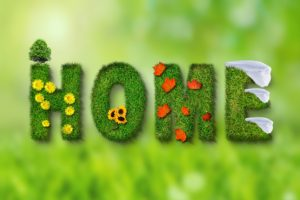 """Home"" written with grass and flowers"